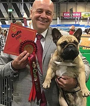 Franzosische Bulldogge Qualzucht Krank Gezuchtet Alinakunterbunt